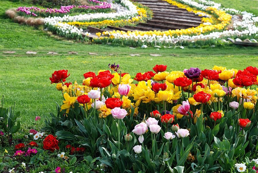 Турция, 7 цветочных праздников
